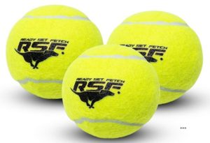 Franklin pet supply ready get set squeak Tennis balls (Reliable)
