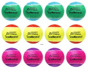 Squeaky scene real Tennis balls (Long-lasting)